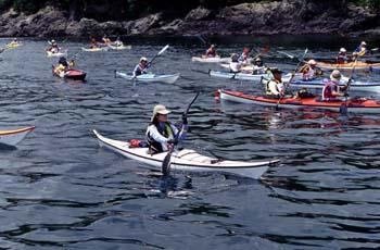 0722_paddling.jpg