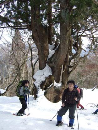 20080309AsiuSugi1.jpg
