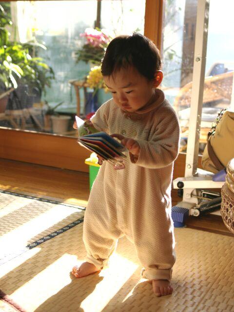 Yo_study.jpg